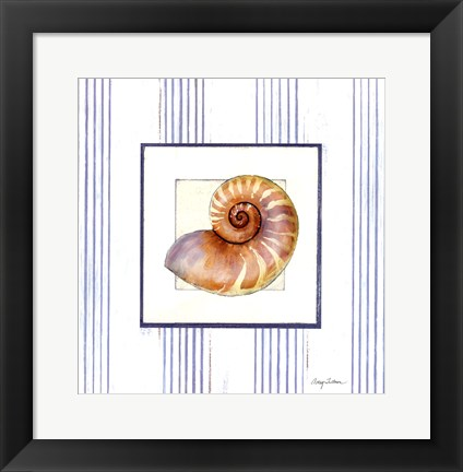 Framed Sanibel Shell III Print