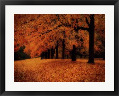 Framed Gold of Autumn West Print