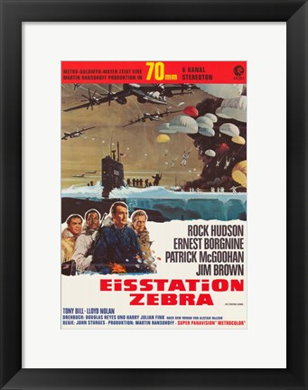 Framed Ice Station Zebra Print