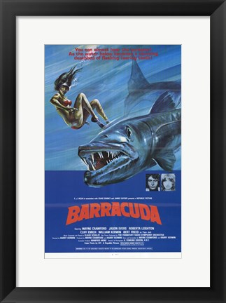 Framed Barracuda Print