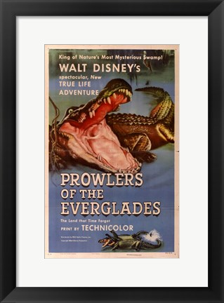 Framed Prowlers of the Everglades Print