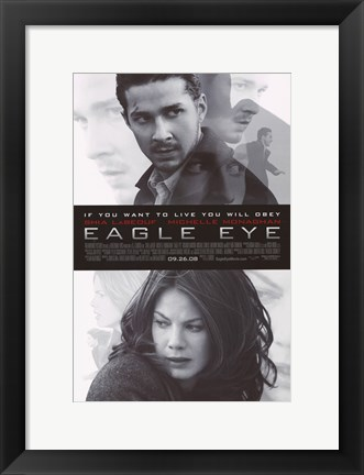 Framed Eagle Eye Print