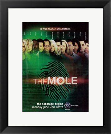 Framed (TV) Mole Print