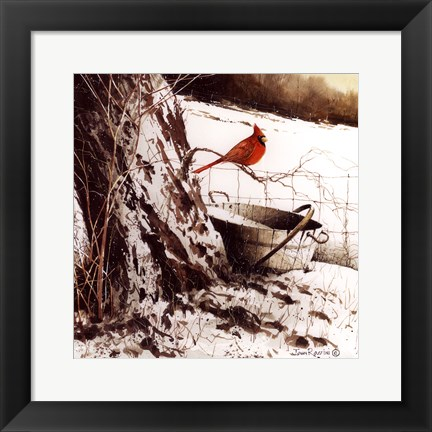 Framed Country Cardinal Print