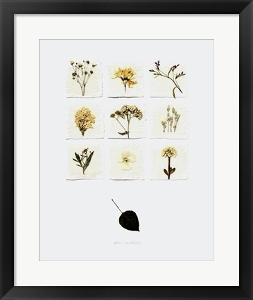 Framed White Lilacs Print