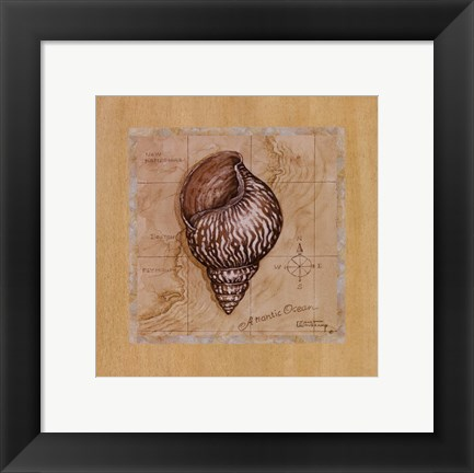 Framed Sea Treasures IV Print