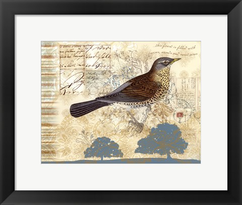 Framed Bird Brained III Print