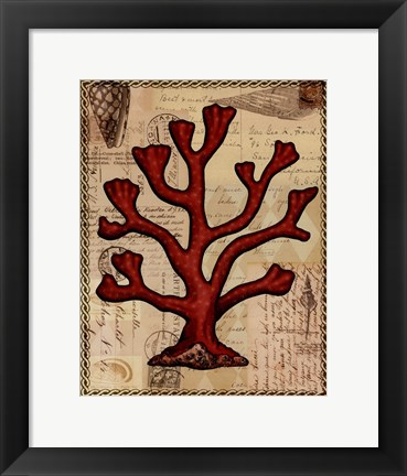 Framed Red Coral IV Print