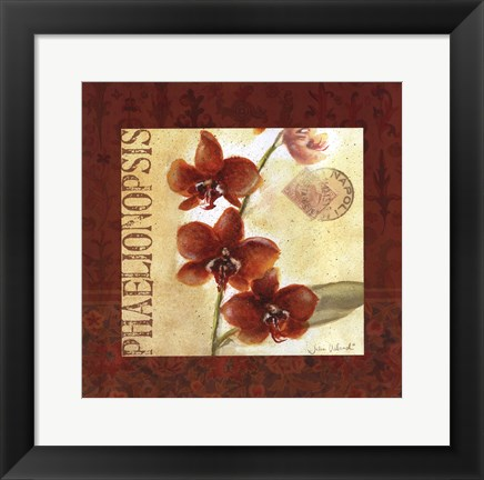 Framed Red Orchid Square I Print