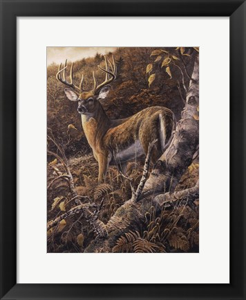 Framed Duke of Autumn Print