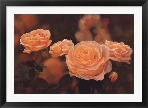 Framed Mandarin Heirloom Roses Print