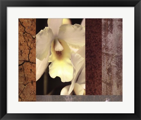 Framed Tropical Whites I Print