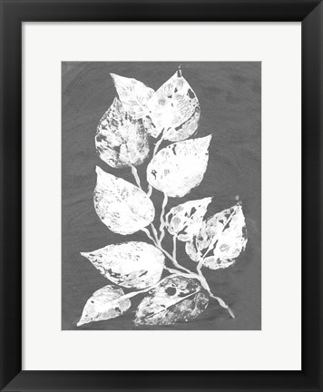 Framed Frosty Philodendron II Print