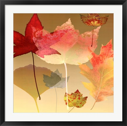 Framed Leaf Counterpoint Print