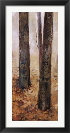 Framed Tranquil Forest II Print