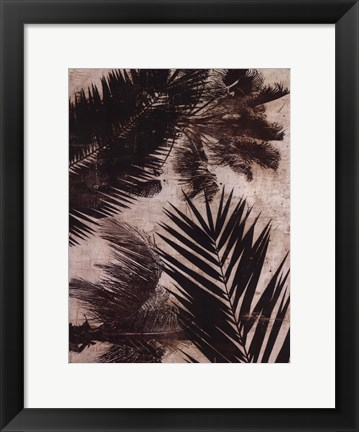 Framed Palms II Print