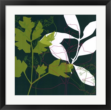 Framed Green Leaf Shadow Print
