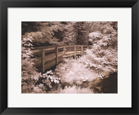 Framed Upper Peninsula I Print