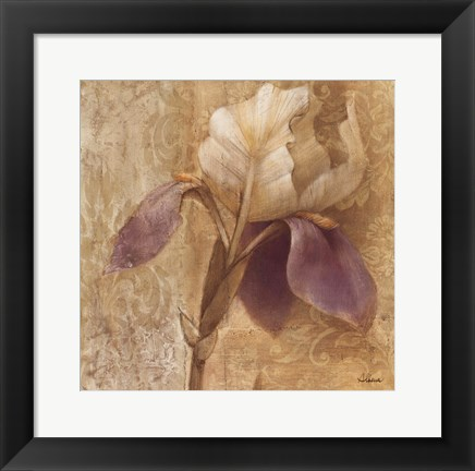 Framed Brocade Iris Print