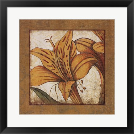 Framed Amaryllis Bloom Print