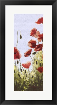 Framed Mountain Poppies II Print
