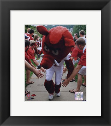 Framed University of Arkansas Razorbacks Mascot 2008 Print