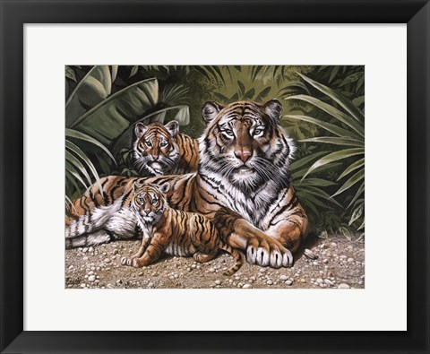 Framed Yellow Tiger With Cubs Print