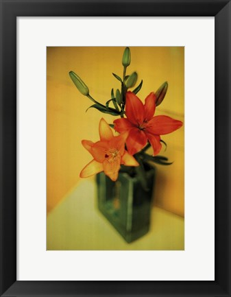 Framed Day Lillies Print