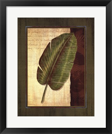 Framed Palm Tropical II - grande Print