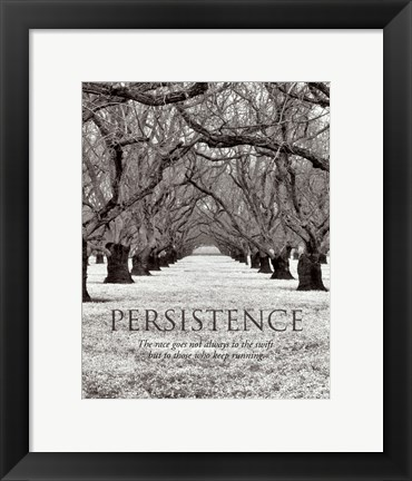 Framed Persistence Print