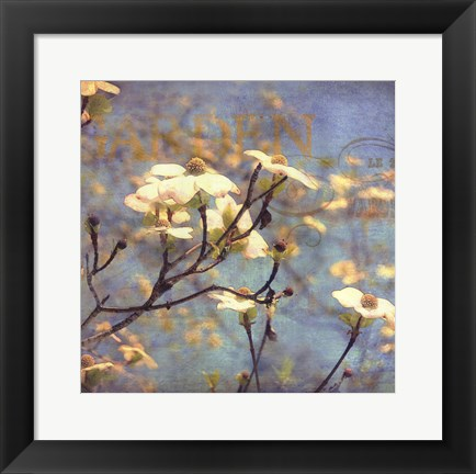 Framed Dogwood II - mini Print