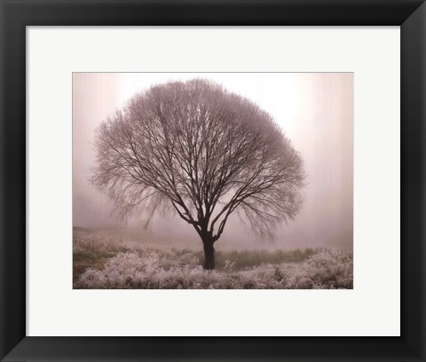 Framed Tranquility II Print
