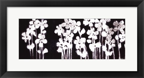 Framed White Flowers on Black I Print