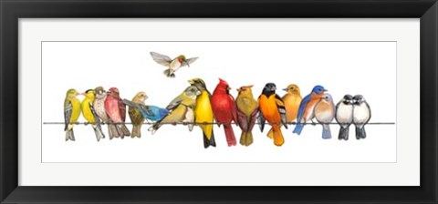 Framed Large Bird Menagerie Print