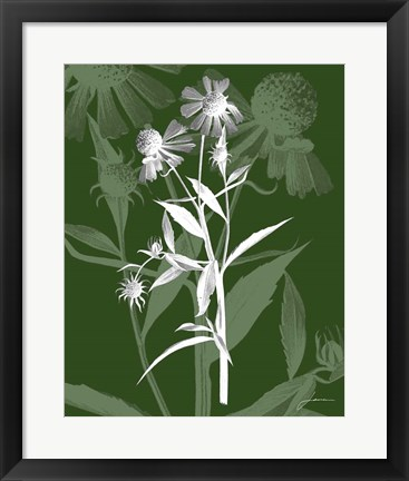 Framed Jewel Stems III Print