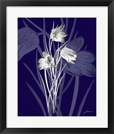 Framed Jewel Stems IV Print