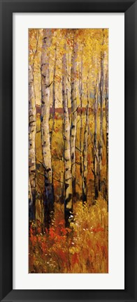 Framed Vivid Birch Forest II Print