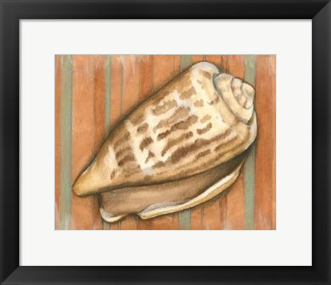 Framed Shell on Stripes III - light Print