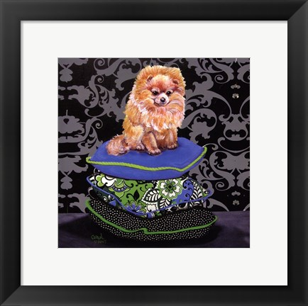 Framed Pomeranian Pillows Print