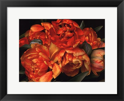 Framed Old World Tulips II Print