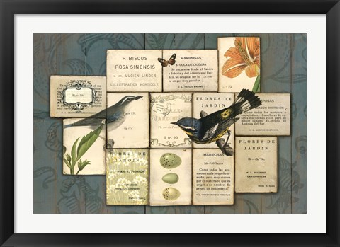 Framed Birds of the Garden Print