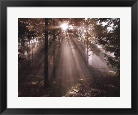 Framed New Day I Print