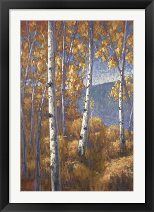 Framed Aspen Forest I Print