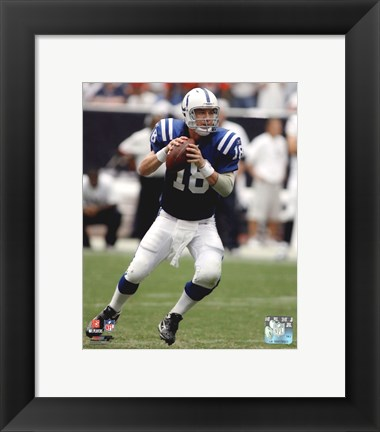 Peyton Manning 2010 In Action Poster By Unknown At