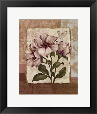 Framed Flower Trio II - mini Print