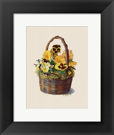 Framed Sunshine Pansy Basket Print