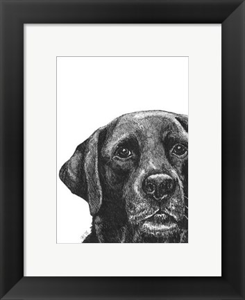 Framed Millie the Black Lab Print