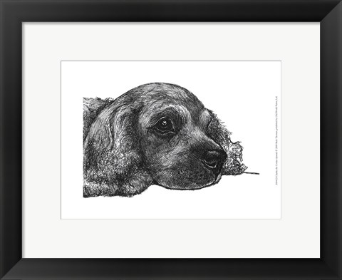 Framed Charlie the Cocker Spaniel Print
