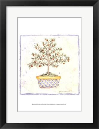 Framed French Topiary II Print