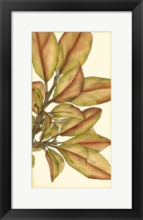 Framed Small Gilded Leaves II Print